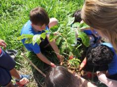Grupo Mentes Iluminadas aprende e se diverte no espaço verde