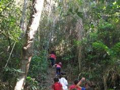 1º anos A e B descobrindo a natureza com o LEAS